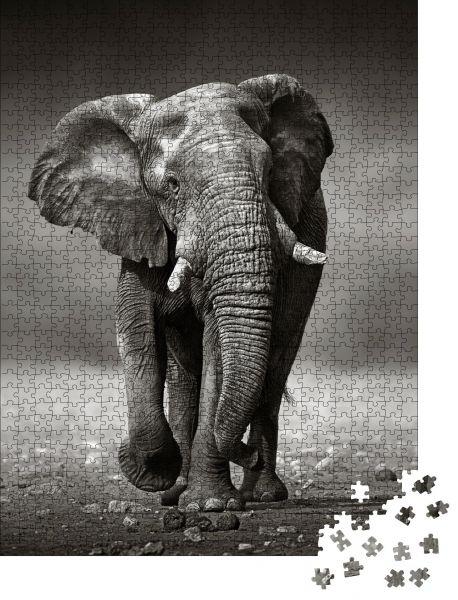 """Puzzle-Motiv """"Afrikanischer Elefant (Loxodonta Africana) nähert sich von vorne - Etosha Nationalpark (Namibia)"""" - Puzzle-Schachtel zu 1000 Teile Puzzle"""