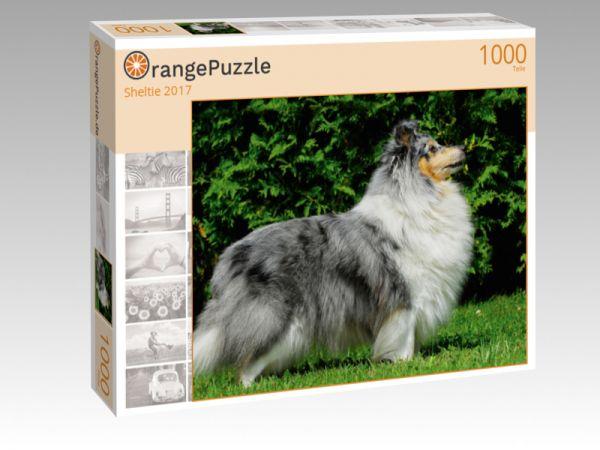 """Puzzle Motiv """"Sheltie 2017"""" - Puzzle-Schachtel zu 1000 Teile Puzzle"""