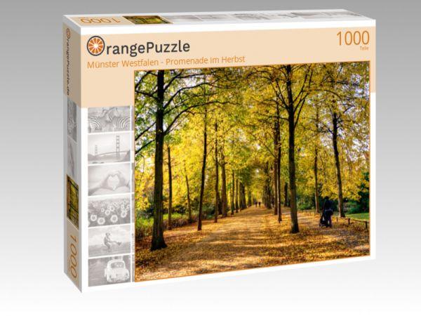 """Puzzle Motiv """"Münster Westfalen - Promenade im Herbst"""" - Puzzle-Schachtel zu 1000 Teile Puzzle"""