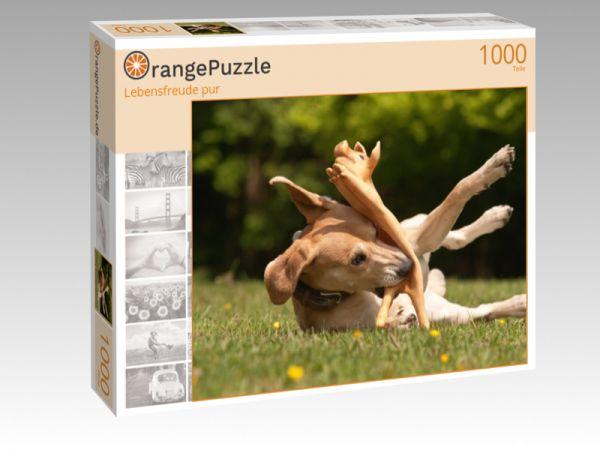"""Puzzle Motiv """"Lebensfreude pur"""" - Puzzle-Schachtel zu 1000 Teile Puzzle"""