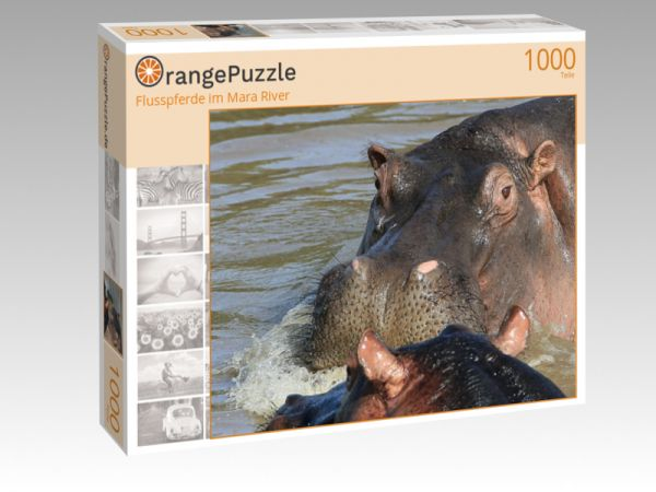 "Puzzle Motiv ""Flusspferde im Mara River"" - Puzzle-Schachtel zu 1000 Teile Puzzle"
