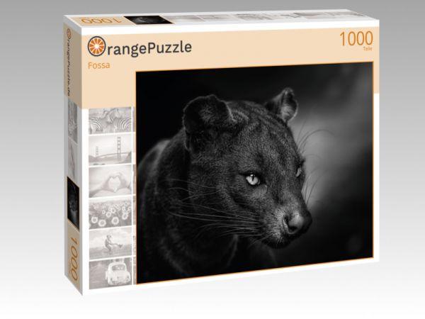 """Puzzle Motiv """"Fossa"""" - Puzzle-Schachtel zu 1000 Teile Puzzle"""