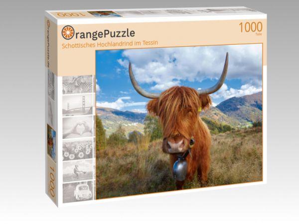 """Puzzle Motiv """"Schottisches Hochlandrind im Tessin"""" - Puzzle-Schachtel zu 1000 Teile Puzzle"""