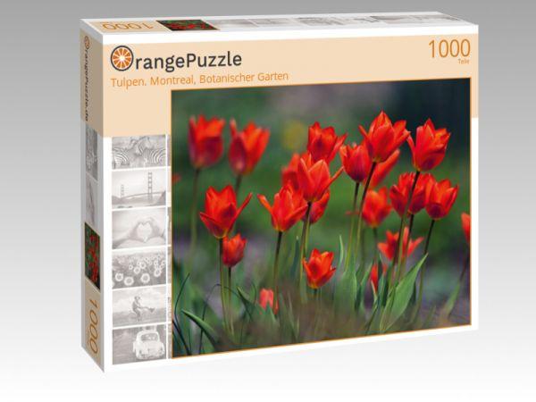 """Puzzle Motiv """"Tulpen. Montreal, Botanischer Garten"""" - Puzzle-Schachtel zu 1000 Teile Puzzle"""