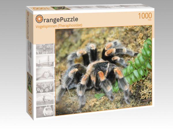 "Puzzle Motiv ""Vogelspinnen (Theraphosidae)"" - Puzzle-Schachtel zu 1000 Teile Puzzle"