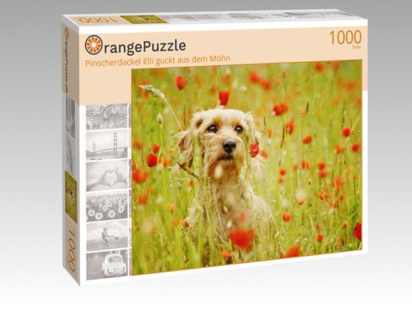 """Puzzle Motiv """"Pinscherdackel Elli guckt aus dem Mohn"""" - Puzzle-Schachtel zu 1000 Teile Puzzle"""