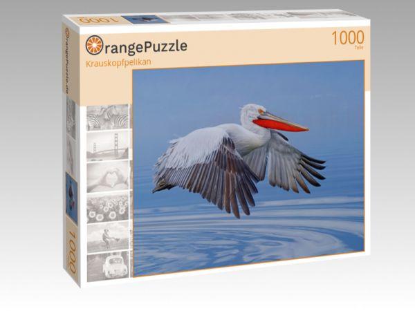 "Puzzle Motiv ""Krauskopfpelikan"" - Puzzle-Schachtel zu 1000 Teile Puzzle"