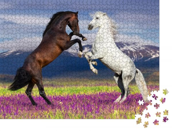 """Puzzle-Motiv """"Zwei Pferde, die sich gegen den Bergblick im Blumenfeld erheben"""" - Puzzle-Schachtel zu 1000 Teile Puzzle"""