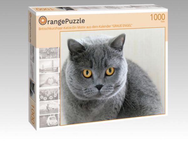 """Puzzle Motiv """"Britischkurzhaar-Katze.Ein Motiv aus dem Kalender """"GRAUE ENGEL"""""""" - Puzzle-Schachtel zu 1000 Teile Puzzle"""