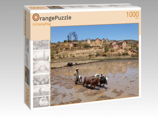 "Puzzle Motiv ""Ochsenpflug"" - Puzzle-Schachtel zu 1000 Teile Puzzle"