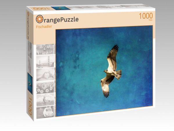 "Puzzle Motiv ""Fischadler"" - Puzzle-Schachtel zu 1000 Teile Puzzle"