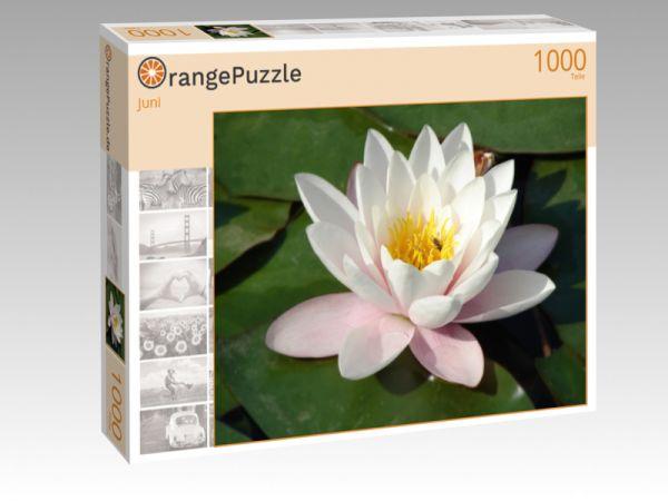 """Puzzle Motiv """"Juni"""" - Puzzle-Schachtel zu 1000 Teile Puzzle"""