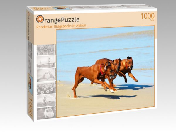 "Puzzle Motiv ""Rhodesian Ridgebacks in Aktion"" - Puzzle-Schachtel zu 1000 Teile Puzzle"