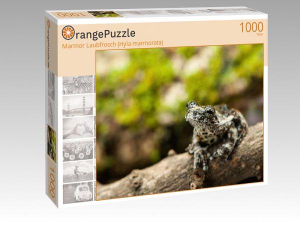 """Puzzle Motiv """"Marmor Laubfrosch (Hyla marmorata)"""" - Puzzle-Schachtel zu 1000 Teile Puzzle"""