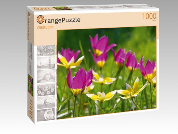 """Puzzle Motiv """"Wildtulpen"""" - Puzzle-Schachtel zu 1000 Teile Puzzle"""