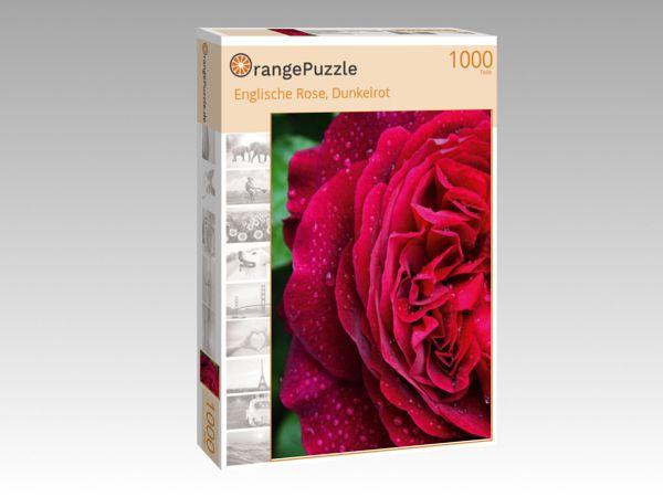 """Puzzle Motiv """"Englische Rose, Dunkelrot"""" - Puzzle-Schachtel zu 1000 Teile Puzzle"""