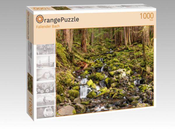 """Puzzle Motiv """"Fallender Bach"""" - Puzzle-Schachtel zu 1000 Teile Puzzle"""