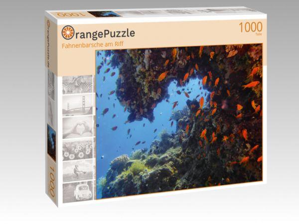 "Puzzle Motiv ""Fahnenbarsche am Riff"" - Puzzle-Schachtel zu 1000 Teile Puzzle"