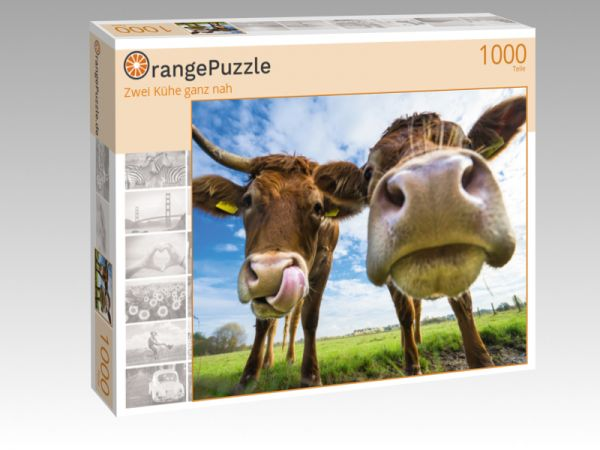 """Puzzle Motiv """"Zwei Kühe ganz nah"""" - Puzzle-Schachtel zu 1000 Teile Puzzle"""