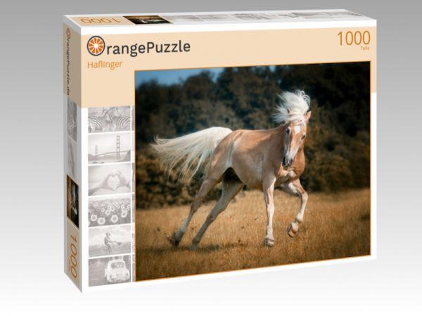 """Puzzle Motiv """"Haflinger"""" - Puzzle-Schachtel zu 1000 Teile Puzzle"""