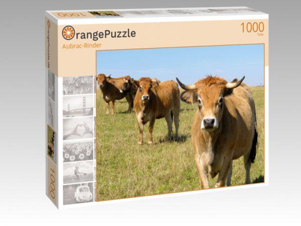 """Puzzle Motiv """"Aubrac-Rinder"""" - Puzzle-Schachtel zu 1000 Teile Puzzle"""