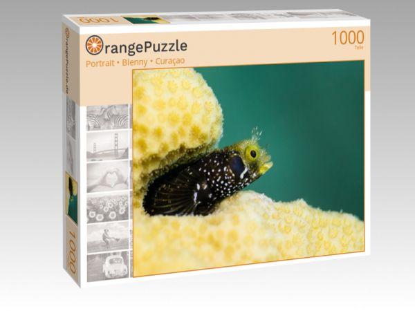 """Puzzle Motiv """"Portrait • Blenny • Curaçao"""" - Puzzle-Schachtel zu 1000 Teile Puzzle"""