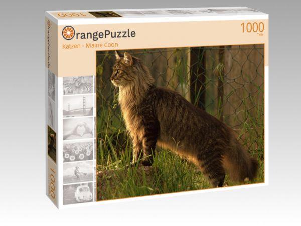 """Puzzle Motiv """"Katzen - Maine Coon"""" - Puzzle-Schachtel zu 1000 Teile Puzzle"""