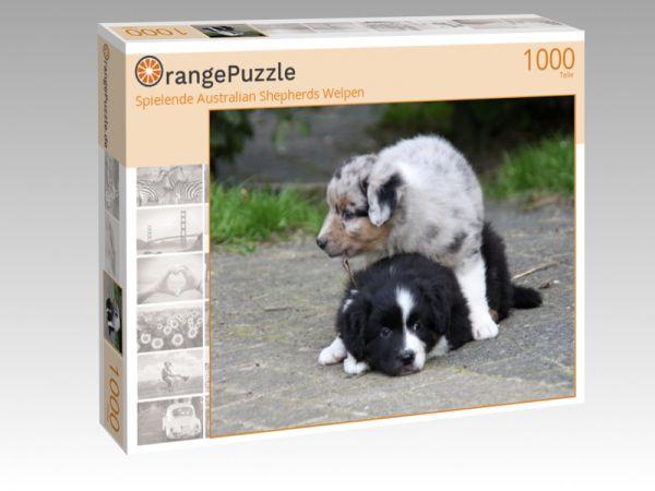 "Puzzle Motiv ""Spielende Australian Shepherds Welpen"" - Puzzle-Schachtel zu 1000 Teile Puzzle"
