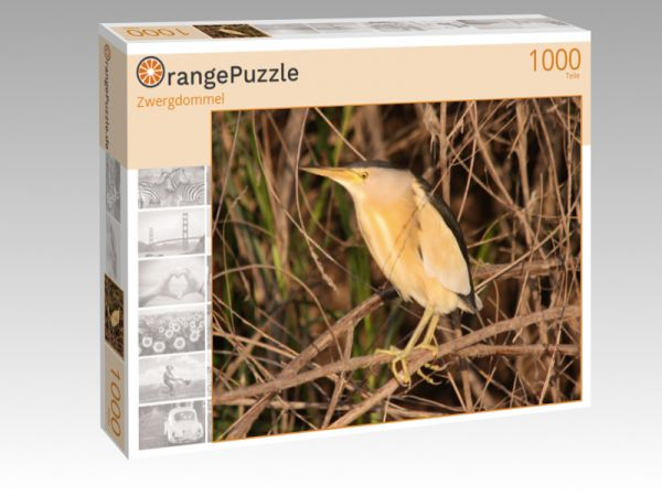 "Puzzle Motiv ""Zwergdommel"" - Puzzle-Schachtel zu 1000 Teile Puzzle"