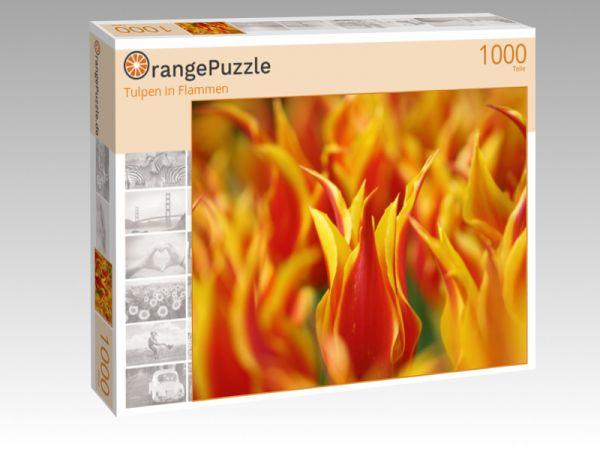 "Puzzle Motiv ""Tulpen in Flammen"" - Puzzle-Schachtel zu 1000 Teile Puzzle"