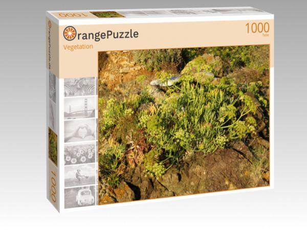 """Puzzle Motiv """"Vegetation"""" - Puzzle-Schachtel zu 1000 Teile Puzzle"""
