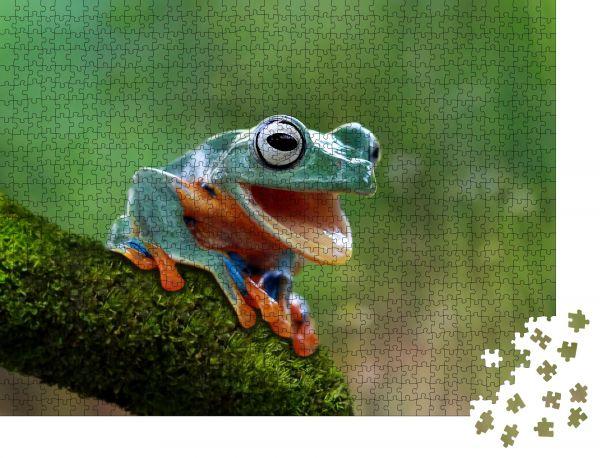 """Puzzle-Motiv """"Baumfrosch, lustiger Frosch"""" - Puzzle-Teile zu 1000 Teile Puzzle"""