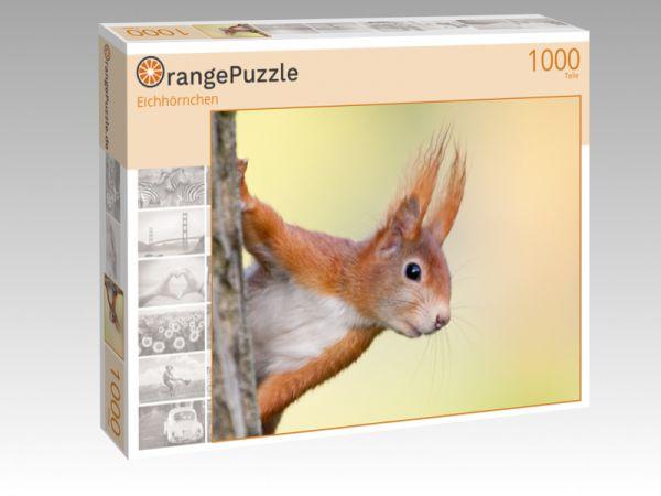 "Puzzle Motiv ""Eichhörnchen"" - Puzzle-Schachtel zu 1000 Teile Puzzle"