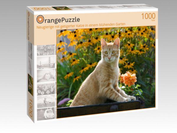 """Puzzle Motiv """"Neugierige rot getigerter Katze in einem blühenden Garten"""" - Puzzle-Schachtel zu 1000 Teile Puzzle"""