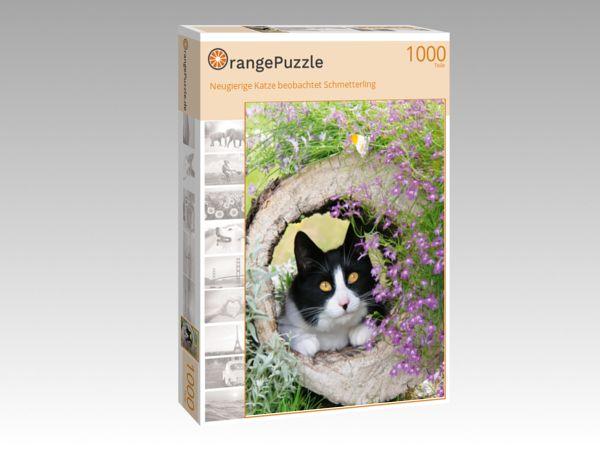 """Puzzle Motiv """"Neugierige Katze beobachtet Schmetterling"""" - Puzzle-Schachtel zu 1000 Teile Puzzle"""