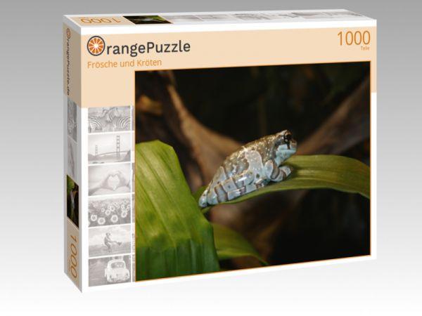 """Puzzle Motiv """"Frösche und Kröten"""" - Puzzle-Schachtel zu 1000 Teile Puzzle"""