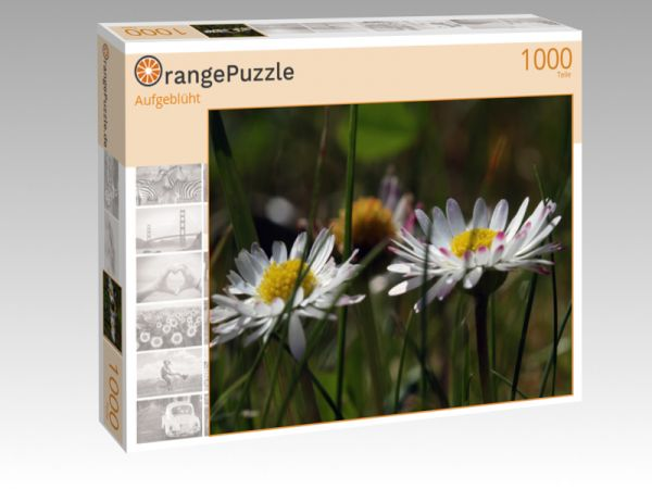 "Puzzle Motiv ""Aufgeblüht"" - Puzzle-Schachtel zu 1000 Teile Puzzle"