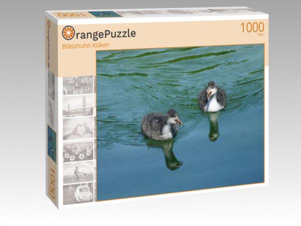 """Puzzle Motiv """"Blässhuhn Küken"""" - Puzzle-Schachtel zu 1000 Teile Puzzle"""