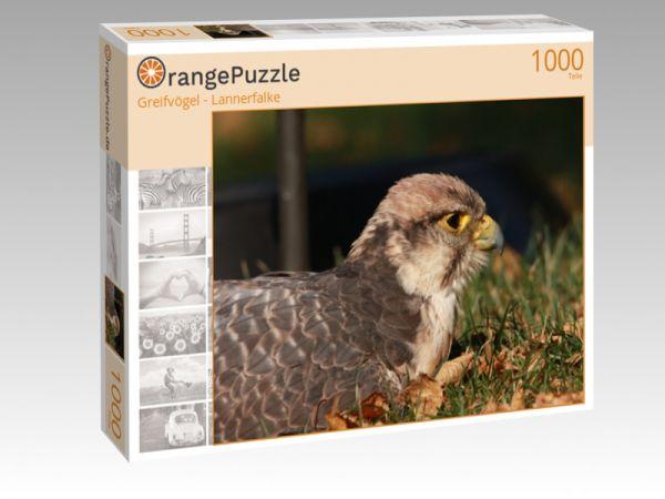 """Puzzle Motiv """"Greifvögel - Lannerfalke"""" - Puzzle-Schachtel zu 1000 Teile Puzzle"""