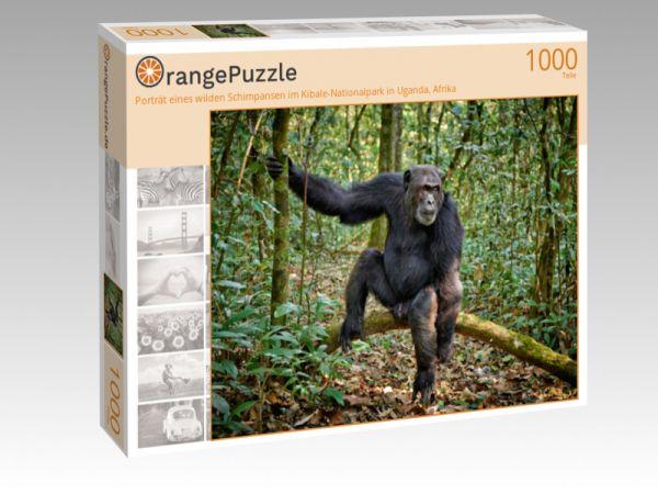 """Puzzle Motiv """"Porträt eines wilden Schimpansen im Kibale-Nationalpark in Uganda, Afrika"""" - Puzzle-Schachtel zu 1000 Teile Puzzle"""
