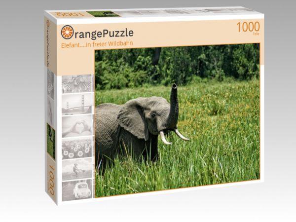 """Puzzle Motiv """"Elefant....in freier Wildbahn"""" - Puzzle-Schachtel zu 1000 Teile Puzzle"""