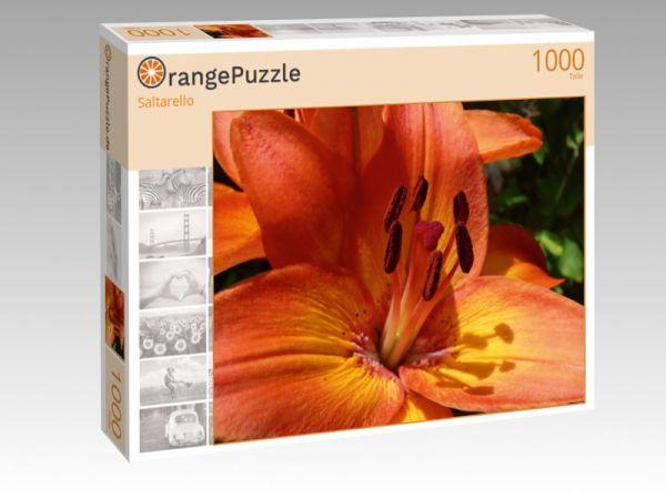 """Puzzle Motiv """"Saltarello"""" - Puzzle-Schachtel zu 1000 Teile Puzzle"""