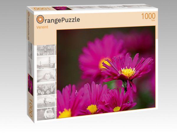 """Puzzle Motiv """"Vereint"""" - Puzzle-Schachtel zu 1000 Teile Puzzle"""