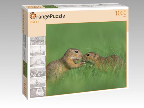 """Puzzle Motiv """"Bild 11"""" - Puzzle-Schachtel zu 1000 Teile Puzzle"""