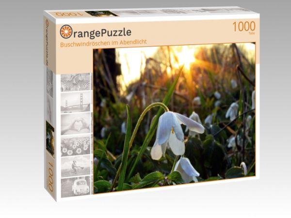 """Puzzle Motiv """"Buschwindröschen im Abendlicht"""" - Puzzle-Schachtel zu 1000 Teile Puzzle"""