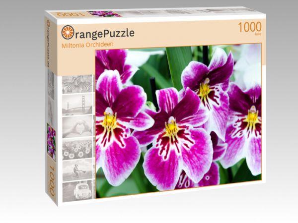 """Puzzle Motiv """"Miltonia Orchideen"""" - Puzzle-Schachtel zu 1000 Teile Puzzle"""