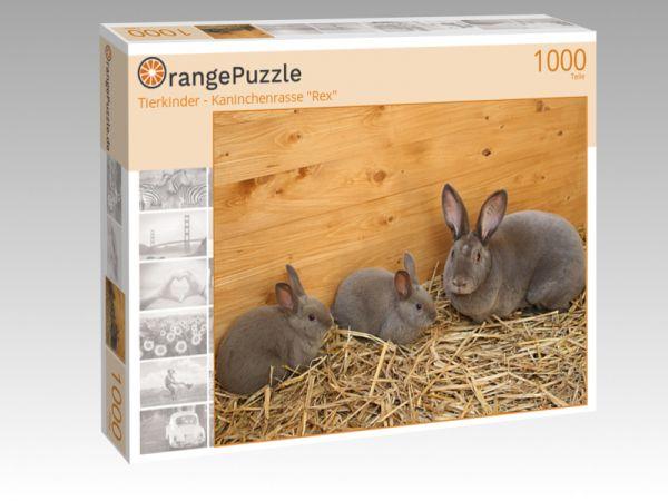 """Puzzle Motiv """"Tierkinder - Kaninchenrasse """"Rex"""""""" - Puzzle-Schachtel zu 1000 Teile Puzzle"""