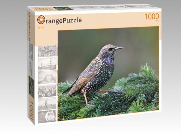 """Puzzle Motiv """"Star"""" - Puzzle-Schachtel zu 1000 Teile Puzzle"""
