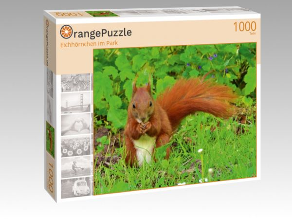 "Puzzle Motiv ""Eichhörnchen im Park"" - Puzzle-Schachtel zu 1000 Teile Puzzle"