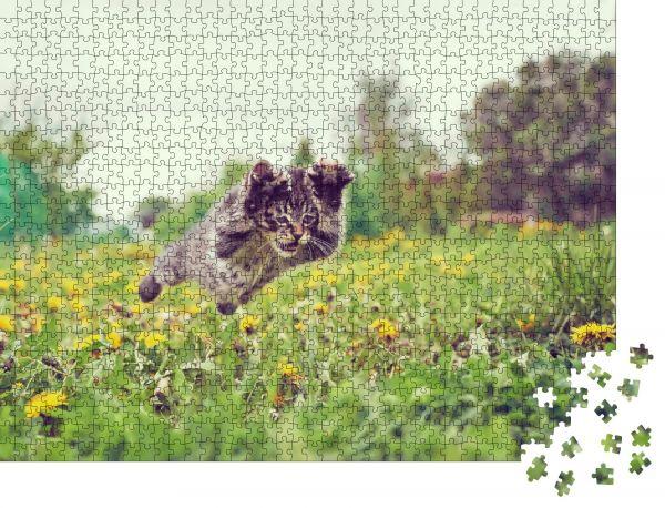 """Puzzle-Motiv """"Das lustige kleine Kätzchen springt im Sommer auf eine grüne Wiese"""" - Puzzle-Teile zu 1000 Teile Puzzle"""
